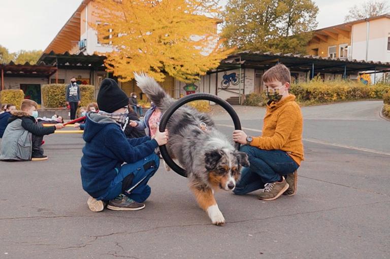 Schulhund-AG